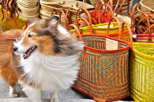 Chula market