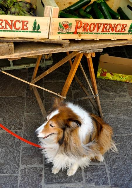 Chula Provence