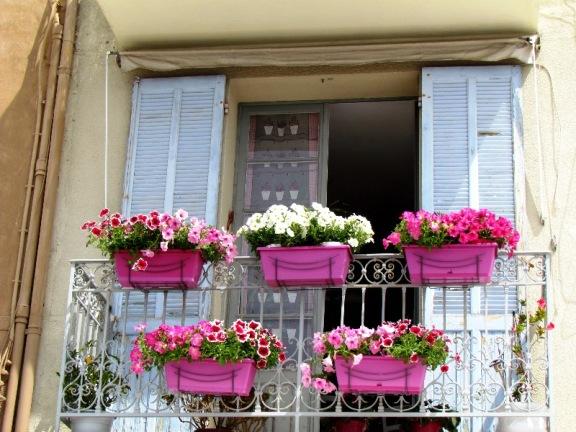 Cassis window