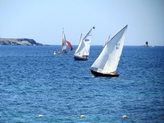 Sanary sailing