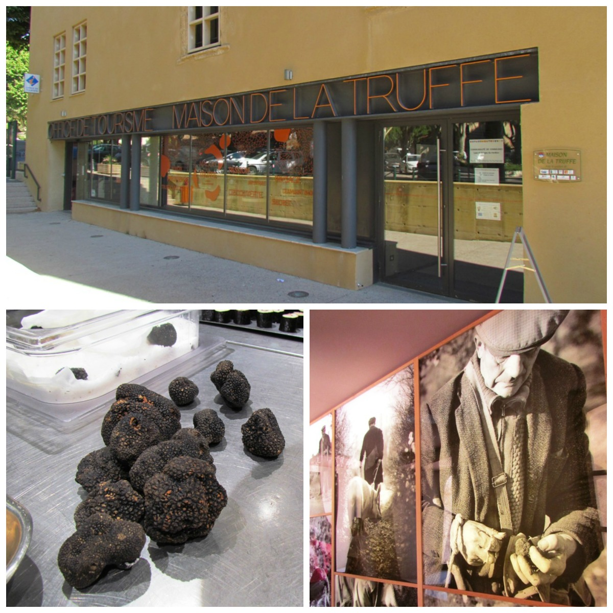 All about truffles at la maison de la truffe in aups - La maison de la truffe ...